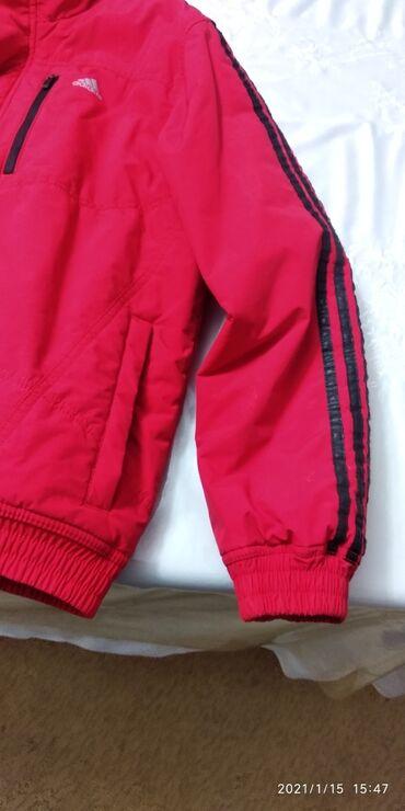 купить скутер б у в бишкеке в Кыргызстан: Куртка осень весна б.у