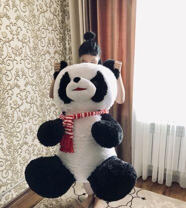 Флипчарты стеклянная маркерная для письма маркером - Кыргызстан: Продаю большую плющевую пандуОчень большой в размерах