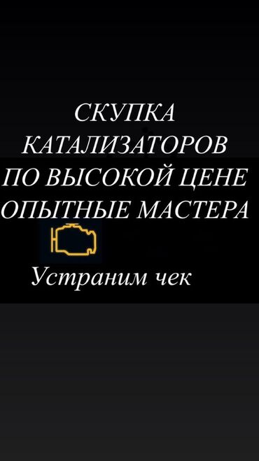 соната бишкек in Кыргызстан | ДРУГОЙ ДОМАШНИЙ ДЕКОР: Скупка катализаторов по самым высоким ценам, скупаю любые виды