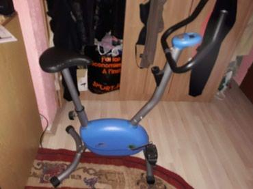 Sobni bicikli u odlicnom stanju. Moze zamena za nordijsko skijanje.  - Novi Sad