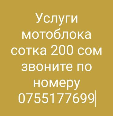 Услуги - Александровка: Грузовые перевозки