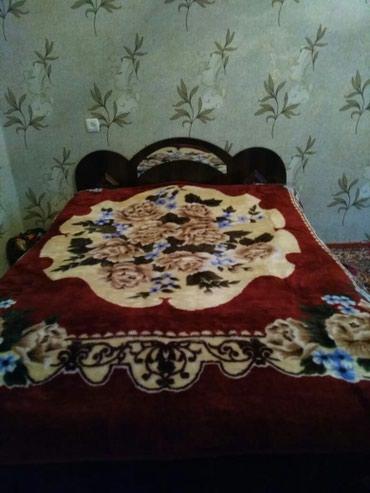Naxçıvan şəhərində Taxt