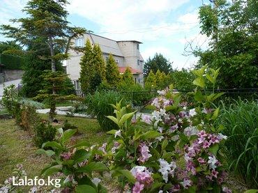 Гостевой дом виктория - Кыргызстан: Сдам в аренду Дома Посуточно от собственника: 180 кв. м, 5 комнат