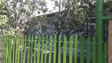 Дом или квартиоа купим в Лебединовка
