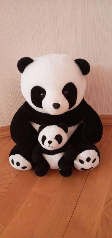papaq panda - Azərbaycan: Panda ayi