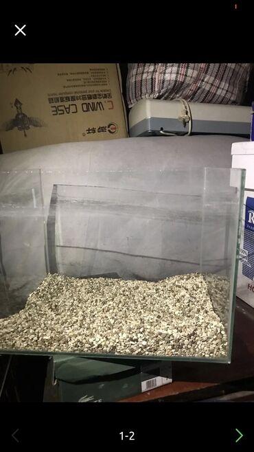 Аквариумы - Кыргызстан: Продаю аквариум  Со всеми оборудованиями   Причина продажи переезд