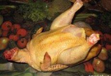 курица суповая оптом с доставкой курица тоок куры кура птица перепела  в Бишкек