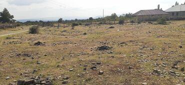 Недвижимость - Габала: Продам 25 соток Для сельского хозяйства от собственника
