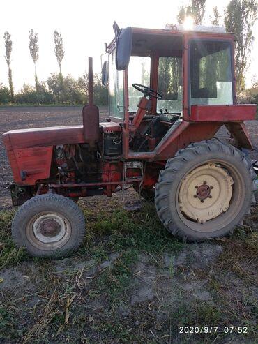 Транспорт - Беловодское: Продаю трактор Т-25 с картофеле сажалкой, копалкой,фрезой(всё агригаты
