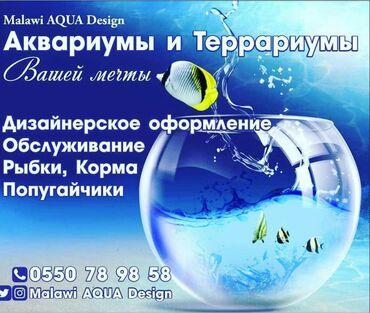Аквариумы - Кыргызстан: Аквариумы вашей мечты! Malawi aqua design подарите себе и детям