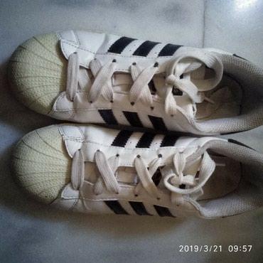 Adidas superstar άσπρα. Αυθεντικά. Νο 38. σε Paloukia