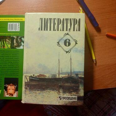 Школьная книга по литературе 150 слм