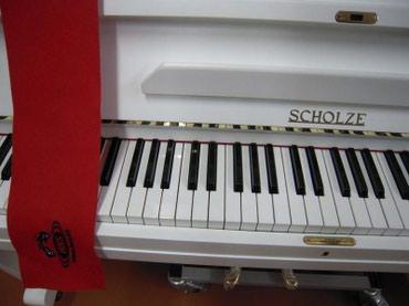 alətlər - Azərbaycan: Scholze - Çexiya istehsalı professional akustik piano. Alətlərə