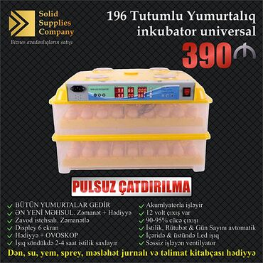 - Azərbaycan: 196 Yumurtalıq tam Avtomat Zavod istehsalı İnkubator. (QAZ Yumurtası