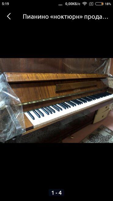 пианино чайка в Кыргызстан: Пианино ноктюрн