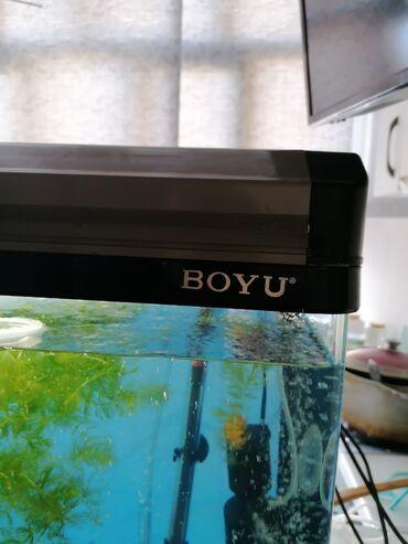 Продается аквариум 100 литров в отличном состоянии