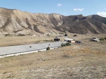 Тоодон 500 м. квадрат мал баккан сарай в Бишкек