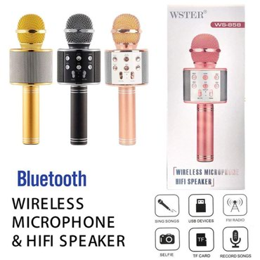 Karaoke Mikrofon sa Bluetooth zvučnikom Model WS-858 Ovaj mikrofon - Nis