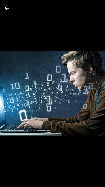 """в компанию """"clever"""" требуется программист. требования: -старше 18 лет; в Бишкек"""