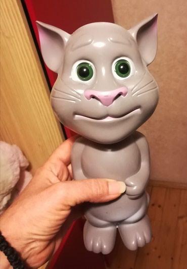 Tom mačak - Batajnica