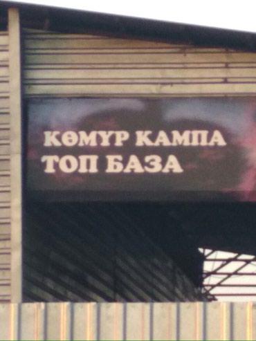 Комур кампа Кара кече Беш сары, минкуш, шарбон  в Бишкек - фото 3