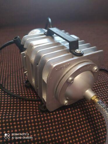 760 объявлений: Воздушный компрессор для аквариума на 4 куба воды, состояние