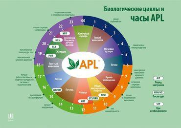 сколько зарабатывают косметологи в бишкеке in Кыргызстан   КОСМЕТОЛОГИЯ: Хватит просто мечтать, пора действовать и по настоящему зарабатывать