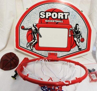 Баскетбольный щит пластиковый с в Бишкек