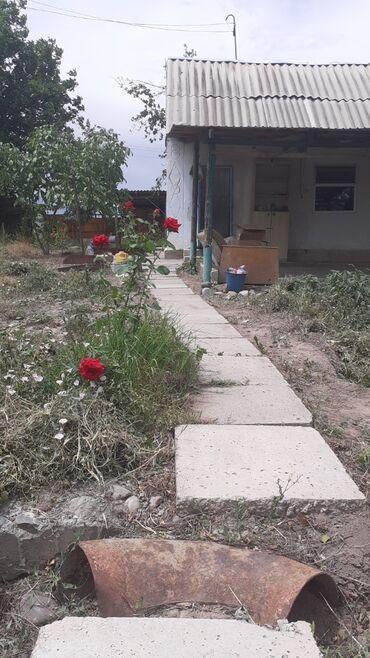Недвижимость - Студенческое: 7 кв. м 2 комнаты, Забор, огорожен