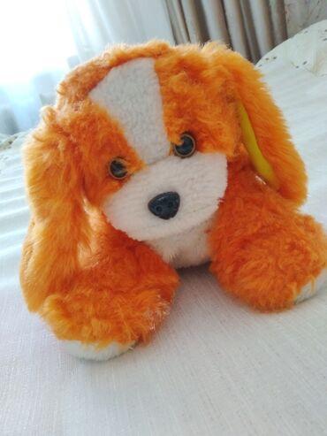 Мягкая игрушка собака цвет оранжевый с белым на 1 ушке вшита
