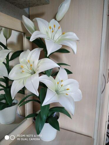 Светильники цветы !!! Очень красиво! Оригинальный подарок ! Доступные