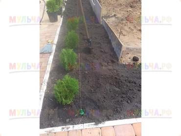 Чернозём отличного качества для газона
