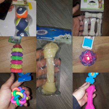 Bakı şəhərində Itler ucun oyuncaqlar.it ve pisikler ucun istenilen mehsulu online