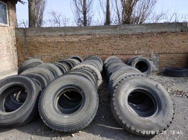 Грузовой и с/х транспорт - Шопоков: Куплю не годные покрышки грузовые
