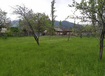 buynuz - Azərbaycan: Satış 9 sot Tikinti mülkiyyətçidən