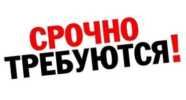 веб бишкек девушка in Кыргызстан | РАЗРАБОТКА САЙТОВ, ПРИЛОЖЕНИЙ: Требуются девушки и женщины для работы по уборке квартир и домов и.т.д