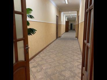 Сдаю кабинеты площадью 16,20,30,55 в Бишкек