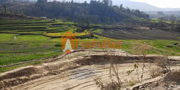 land having area 17-0-0-0, facing north, 10 feet pitched road is on in Kathmandu