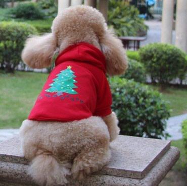 Кофточка для собаки мелкой породы либо щенка 5-7 кг  в Бишкек