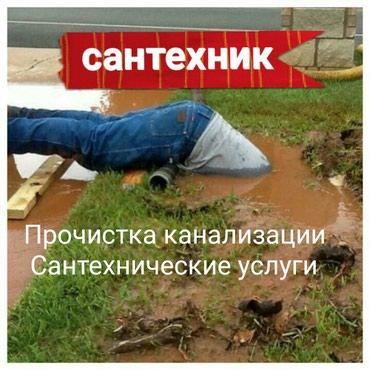 ad-image-51370663