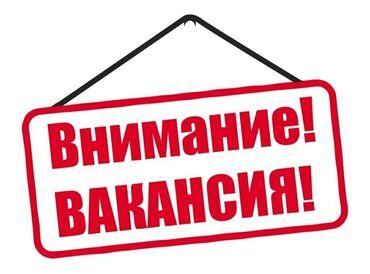 Торговые агенты - Кыргызстан: Торговый агент. Без опыта. 5/2