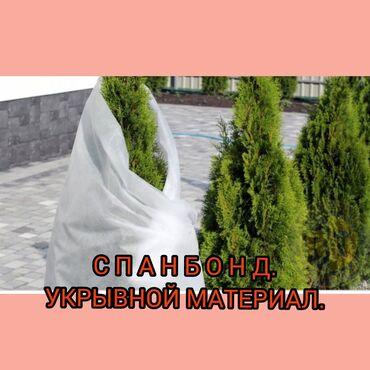 Спанбонд-укрывной материал.Белым спанбондом плотностью 42 и г/м2