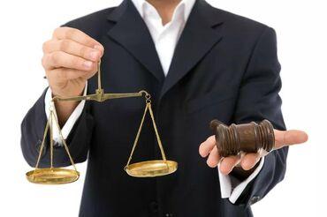 Участие в судебных заседаниях, выезды на место ЧП, ДТП с опытными