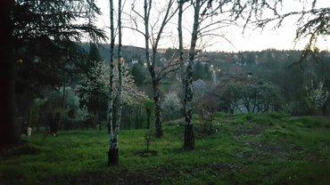 Prodajem ili menjam za stan kuću pored jezera Avala-Trešnja 150m2 - Belgrade