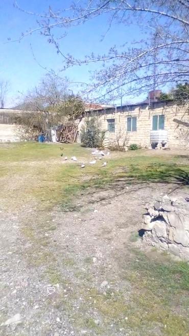 Bakı şəhərində Satış 25 sot İnşaat