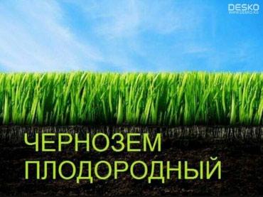 ad-image-49157177