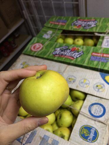продажа семена в Кыргызстан: Срочно продам яблоки . Сорт семерянка .  первый сорт  второй сорт мног