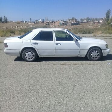 195 объявлений: Mercedes-Benz E 220 2.2 л. 1994 | 500 км