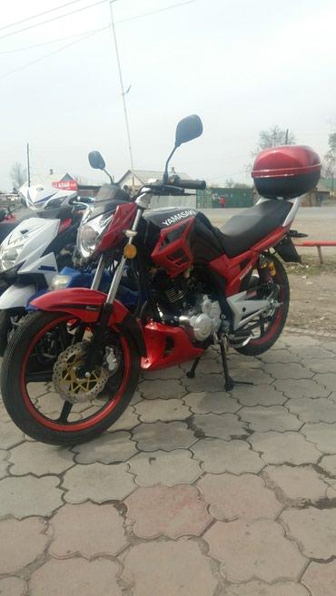 Мотоциклы и мопеды - Кок-Ой: Маг.Адеми-мото продажа бензо.и электро скутеров и мотоциклов
