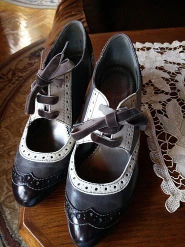 Braon sa - Srbija: Braon cipele sa plišanim pertlama.Bez ikakvih oštećenja br.39.Jednom